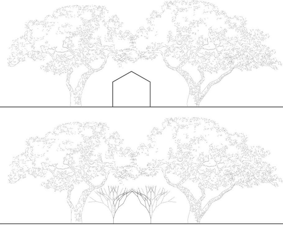 树木生长场景手绘